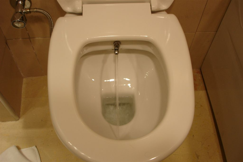 220v appliance on a 245v uk circuit page 2 diynot forums - Japanese toilet bidet combination ...